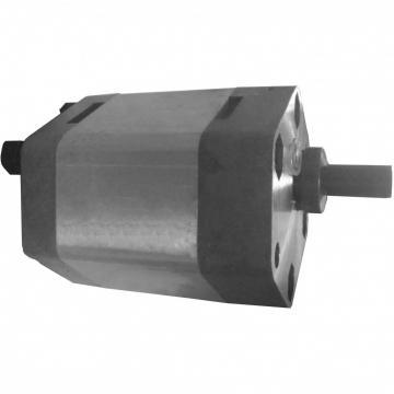 NACHI IPH-56B-40-125-11 IPH Double Pompe à engrenages