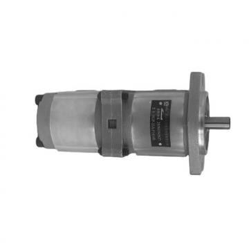 NACHI IPH-55B-40-40-11 IPH Double Pompe à engrenages
