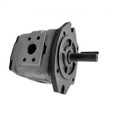 NACHI IPH-45B-32-40-11 IPH Double Pompe à engrenages