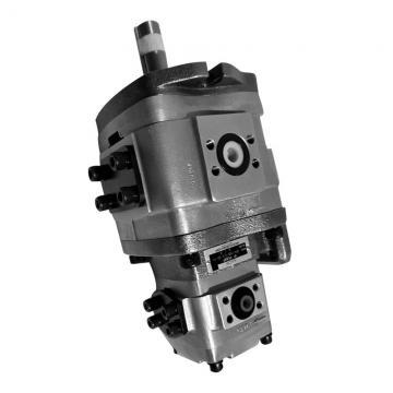 NACHI IPH-36B-13-80-11 IPH Double Pompe à engrenages