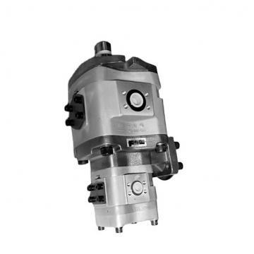 NACHI IPH-6A-125-21 IPH Pompe à engrenages