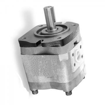 NACHI IPH-4B-20-20 IPH Pompe à engrenages