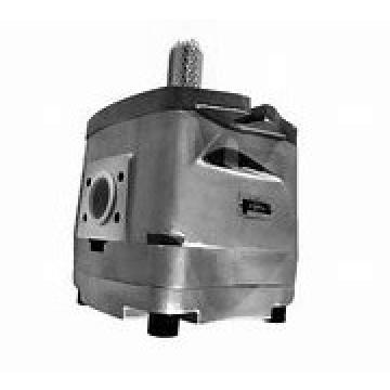 NACHI IPH-6B-125-21 IPH Pompe à engrenages