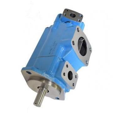 Vickers PV032R1L1T1NMMD4545 PV 196 pompe à piston