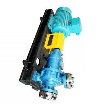 Vickers PV032L1K1T1NMFC4545 PV 196 pompe à piston