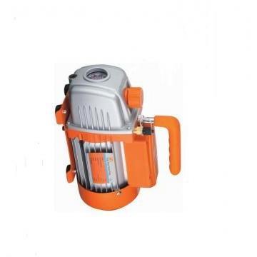 Vickers PV032R1K1AYNMMC+PGP511A0190CA1 PV 196 pompe à piston