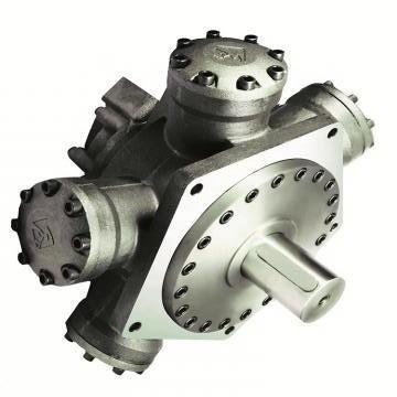 Vickers PV032R1K1JHNFPV4545 PV 196 pompe à piston