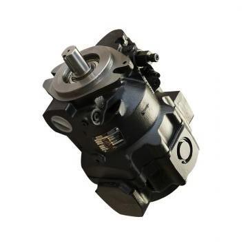 Vickers PV032R1K1T1WMFC4545 PV 196 pompe à piston